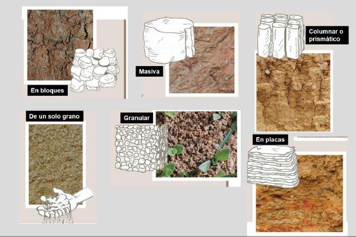 Importancia de la estructura en la salud del suelo