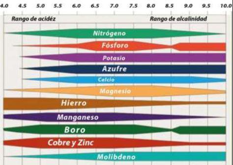 Como leer el pH del suelo