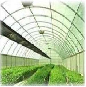 problemas en los cultivos-Fertilab