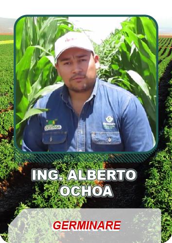 Testimonio Ing. Alberto Ochoa