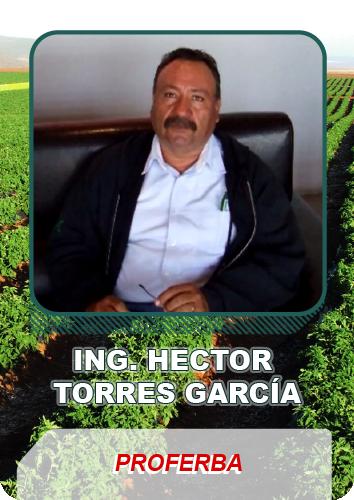 Testimonio Ing. Hector Torres García